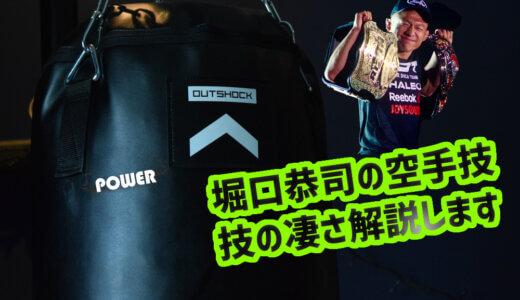 堀口恭司の強さのヒミツ「空手の技の出し方」を解説します